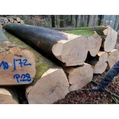 The latest arrival of new goods imported from Germany to the German beech logs AB level wholesale