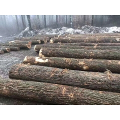 Imported American Ash Ash Ash New York State Anticorrosive Insects wholesale