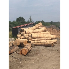 Kingwaywood hand inspection of imports of the United States northern red Oak logs spiny material wholesale