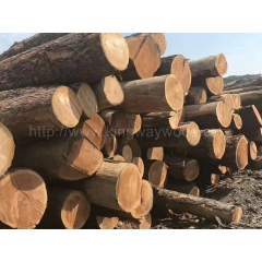 Kingwaywood The new supply of the United States Pennsylvania New York state cherry wood for 10 counters wholesale