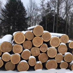 Kinwaywood stable for the United States imported logs furniture logs Pennsylvania New York imported ash/cherry/red oak/maple basswood wholesale