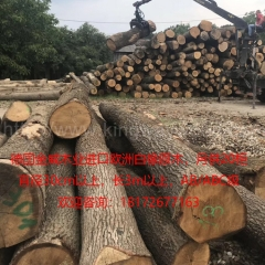 Kingwaywood import European wood oak white oak logs can be cut monthly for 20 cabinets solid wood lumber can be cut AB class, ABC class wholesale