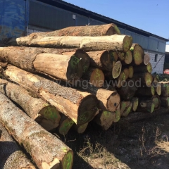 kingwaywood import European white oak logs ABC grade solid wood cutting board wood furniture wood wholesale wholesale